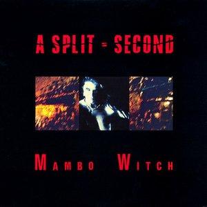 Bild für 'Mambo Witch'
