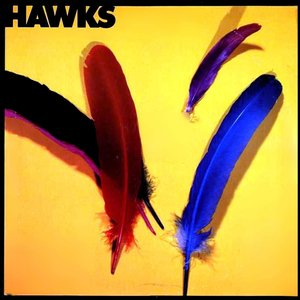Image for 'The Hawks'