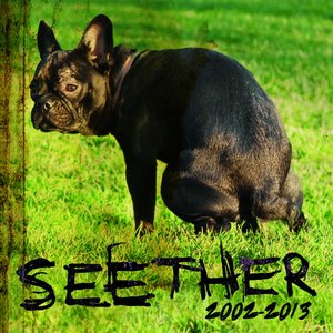 Image for 'Seether: 2002 - 2013'