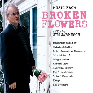 Immagine per 'Broken Flowers'