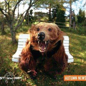 Imagen de 'Autumn News'