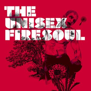 Image for 'Firesoul (Single)'