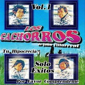 Image for 'Solo Exitos'