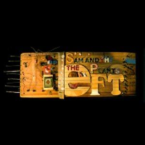 Image pour 'The Eft'