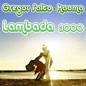 Image for 'Gregor Salto & Kaoma'