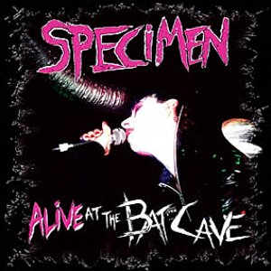 Image for 'Alive At The Batcave'