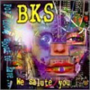Image for 'BKS'