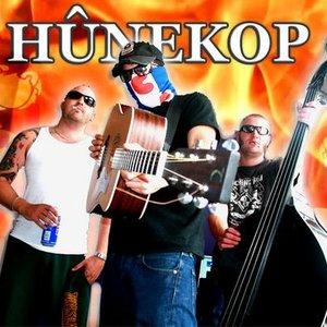 Image for 'De Hûnekop'