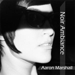 Bild för 'Noir Ambiance'