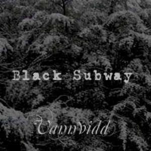 Image for 'Split Black Subway / Vannvidd / Land Of Ice'