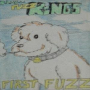 Image for 'First Fuzz'
