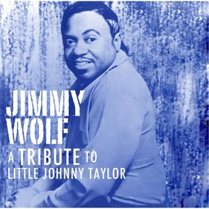 Image for 'A Tribute to Little Johnny Taylor'