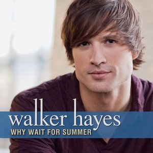 Image for 'Why Wait For Summer'