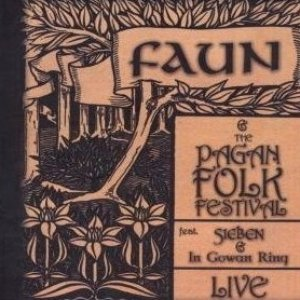 Image pour 'Faun and the Pagan Folk Festival: Live'