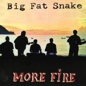 Bild für 'More Fire'