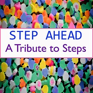 Image for 'A Tribute to Steps'