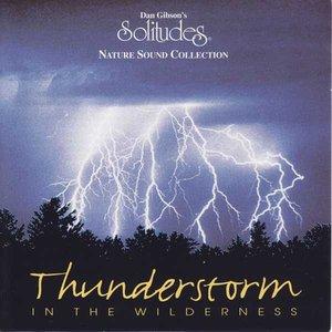Imagem de 'Solitudes: Thunderstorm in the Wilderness'