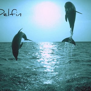 Immagine per 'Lagun'