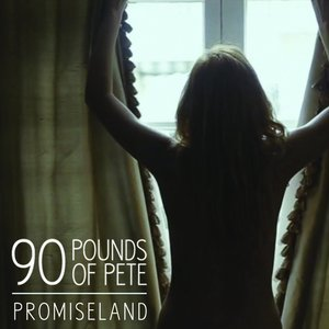 Image for 'Promiseland'
