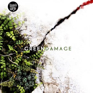 Image for 'Green Damage'