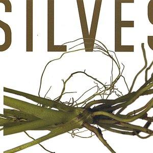 Image for 'Silvestre'