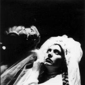 Image for 'Lene Lovich'