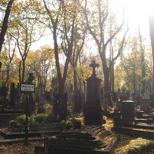 Image for 'L'enterrement de ma fille'