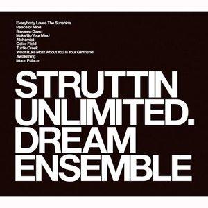Image for 'Dream Ensemble'