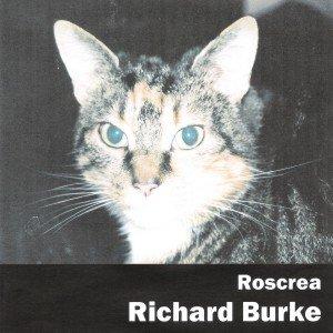 Image for 'Roscrea'