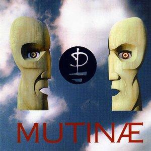 Image for 'Mutinae'