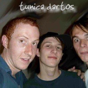 Image for 'Tunica Dartos'