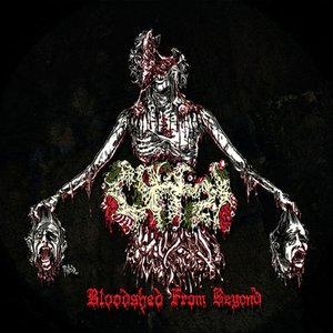 Image for 'Bloodshed From Beyond'