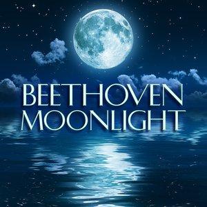 Immagine per 'Moonlight'