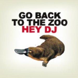 Immagine per 'Hey DJ'