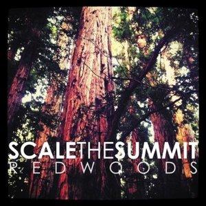 Immagine per 'Redwoods - Single'