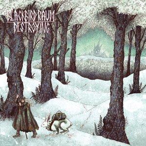Bild für 'Destroying'