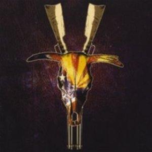 Bild für 'Devil In The Details'