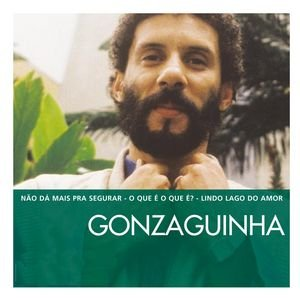 Image for 'The Essential Gonzaguinha'