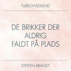 Image for 'De Brikker Der Aldrig Faldt På Plads (feat. Steffen Brandt)'