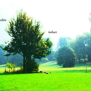 Image for 'Meadow (Distant Lights)'
