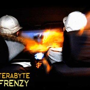 Image for 'Terabyte Frenzy'