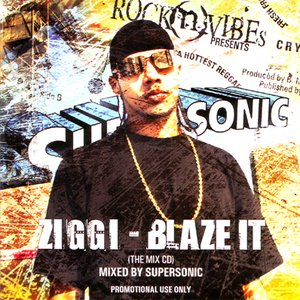 Image for 'Blaze It (The Mix CD)'