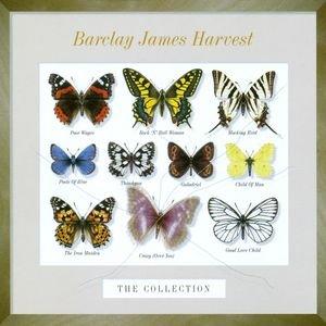 Imagen de 'The Collection'