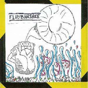 Bild för 'Flip Banshee'