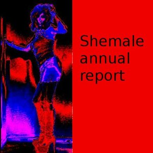Image for 'Shemale annual report 1'