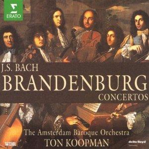 Image for 'Bach, JS : Brandenburg Concertos Nos 1 - 6, Triple Concerto & Organ Concerto'