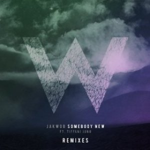 Imagen de 'Somebody New - Remixes'
