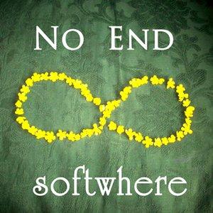 Image pour 'NO END (radio edit) Single'