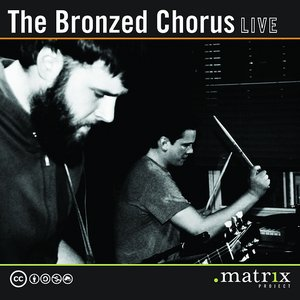 Image for 'The Bronzed Chorus Live at the dotmatrix project'