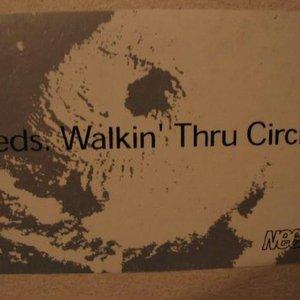 Image for 'Walkin' Thru Circles'